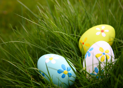 An image relating to Celebrate Egg Rolling differently for 2021